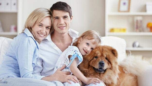 Wills & Trusts dog-young-family Direct Wills Tyne & Wear